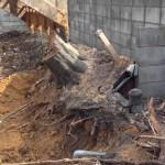 【便利屋動画富山】木の根っこ撤去工事・重機作業(富山市布瀬)